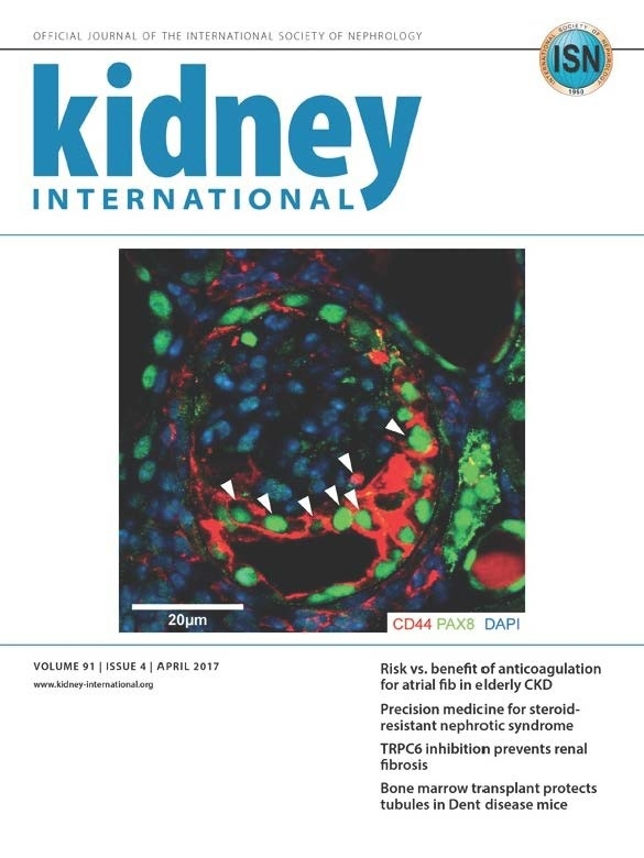 Shankland Lab Research featured on cover of Kidney International