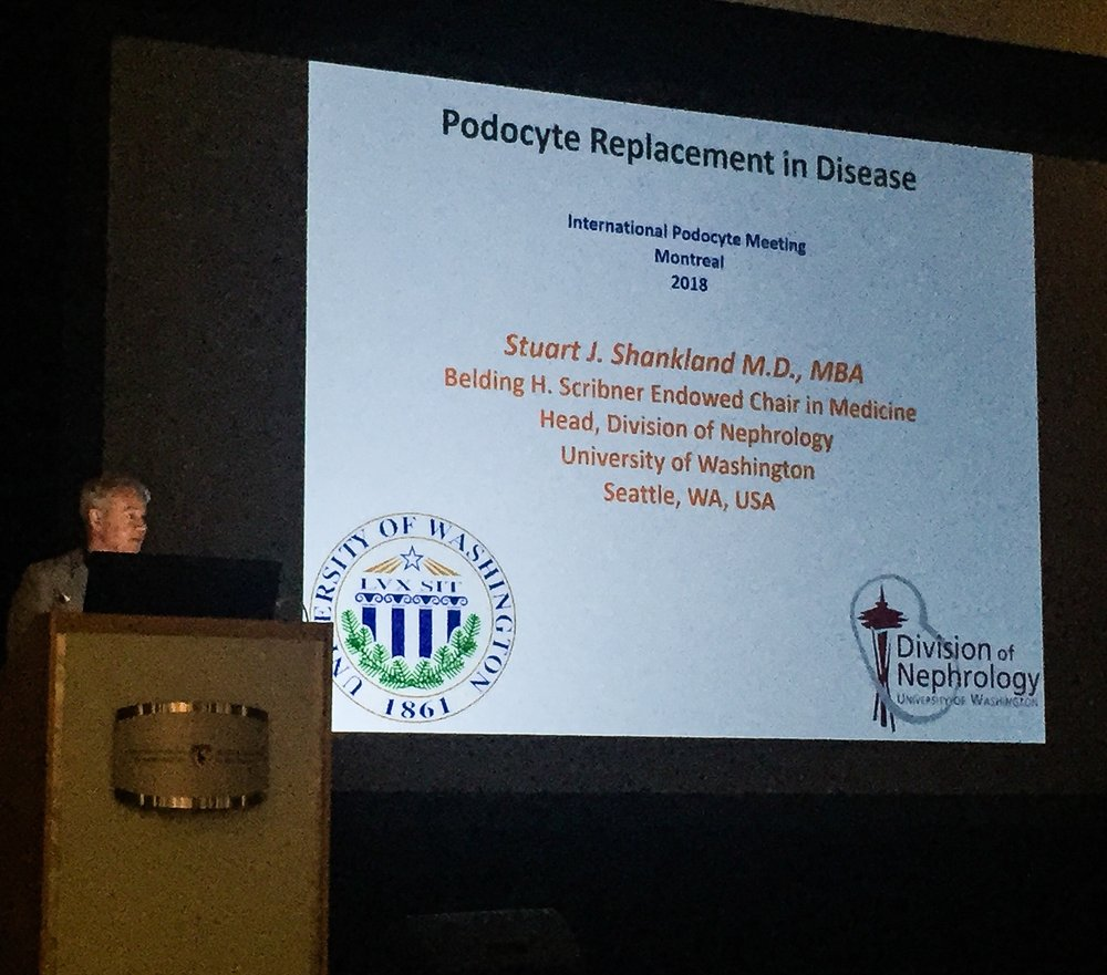 12th International Podocyte Conference -