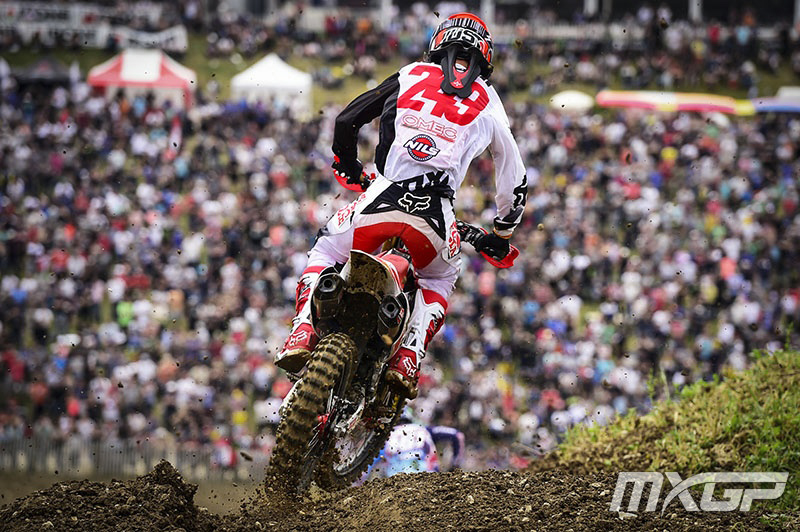 Tim Gajser :: photo MXGP