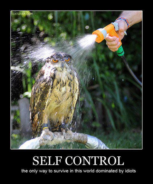 Tout n'est qu'une question de self control. En une image.