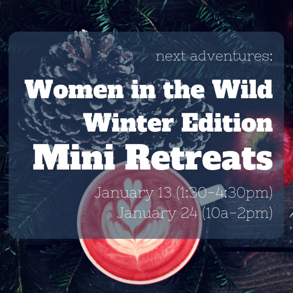 WITW Winter mini retreats.png