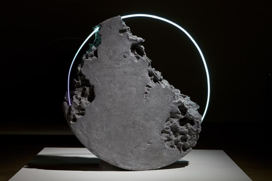 Luna Fossil VIII