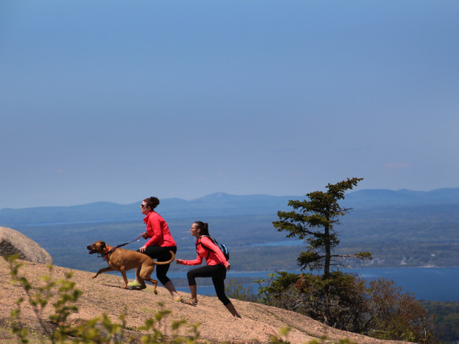 Acadia National Park, Cadillac Mountain, Hikers with Dog.jpg