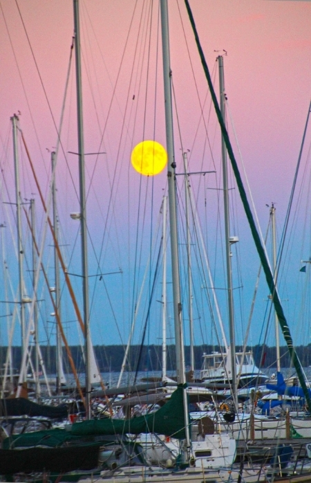 WEB-Bayfield-Wisconsin,-Port-Superior-Vertiical-with-Harvest-Mooon.jpg
