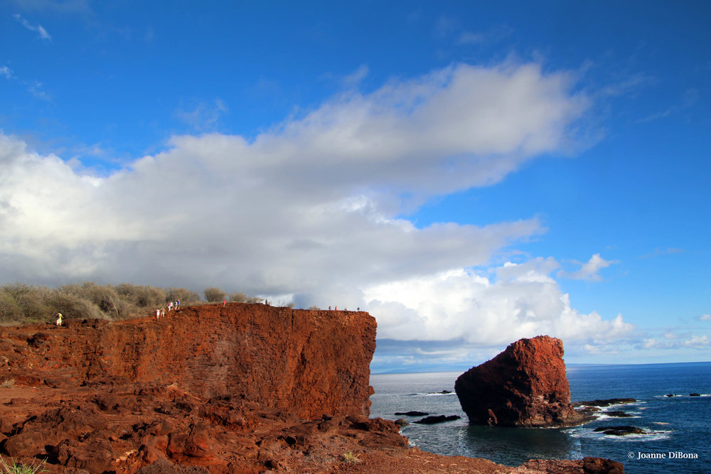 Hike to Sweetheart Rock, The Island of Lana'i              © Joanne DiBona