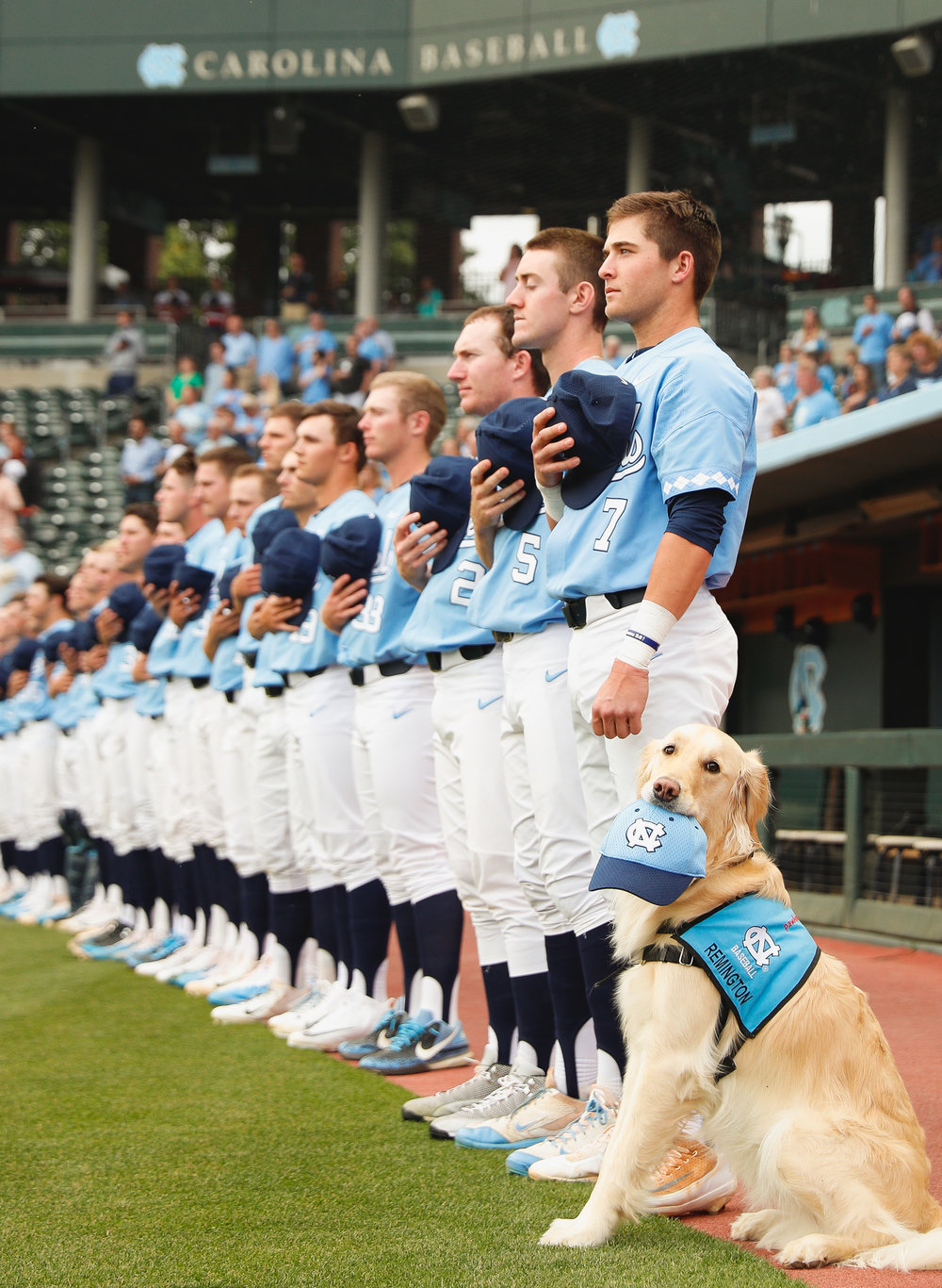 UNC vs Liberty Baseball 2017SCP0264seqn}.JPG