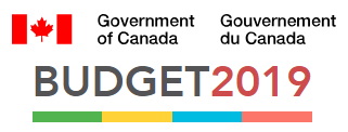 2019budget.png