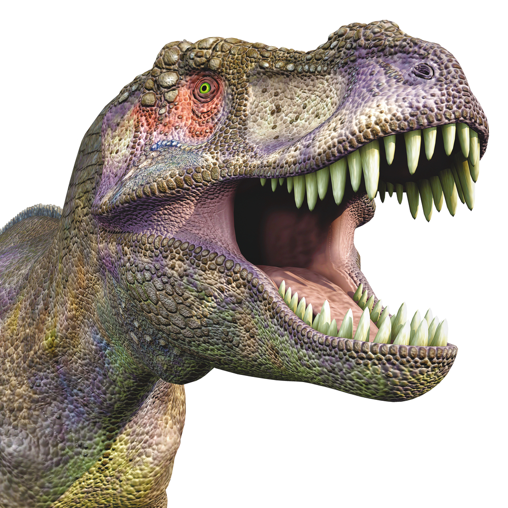 Roaring T-Rex. Source: DM7/Shutterstock.com