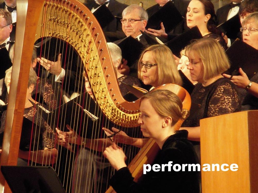 Performance 2.JPG