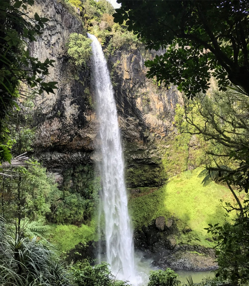 Bridal Veil Falls 🌿  This is such an amazing piece of New Zealand . With an amazing encounter of a Kereru 🐦 .  The Shack - had fantastic breakfast . I had the smashed Green  peas  .. 😋 Sooo Good .  Solscape  amazing eco retreat 🙏🏼     Thankyou Raglan 💗💗