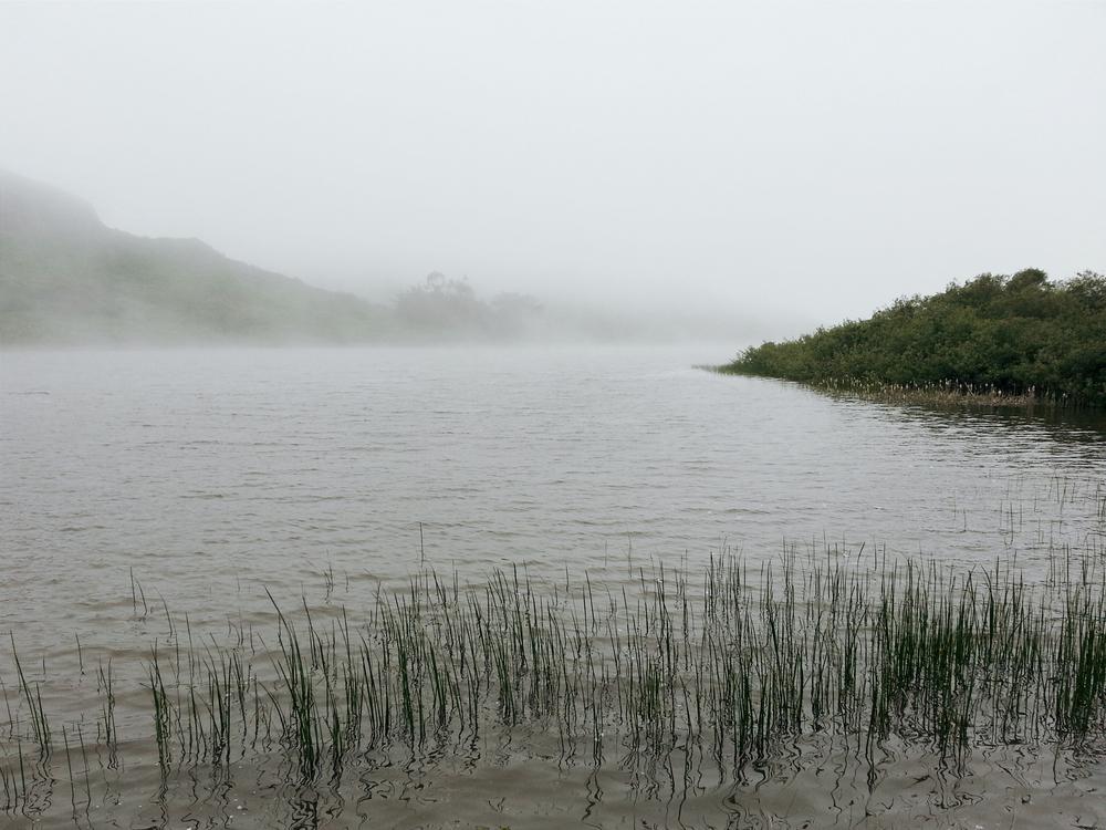 marinheadlands.jpg