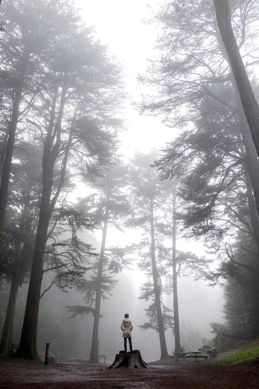 redwood-vivianchen-8206-2sm.jpg