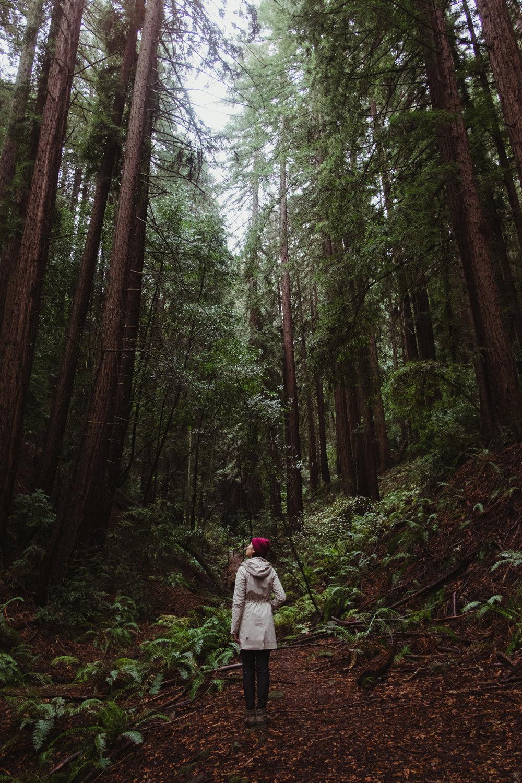 redwoodregional-vivianchen-1737sm.jpg