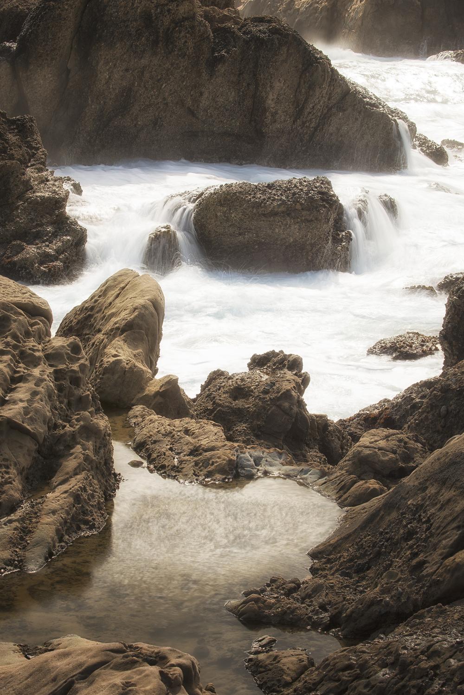 Morton_Monterey_13.jpg