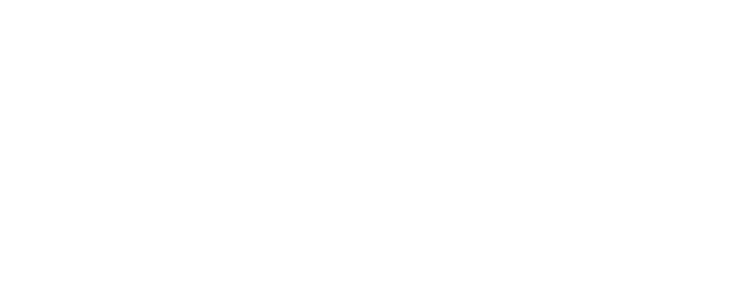 Beacon Strategies - Health and Social Services Consultants