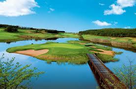 golfgreen (9).jpg