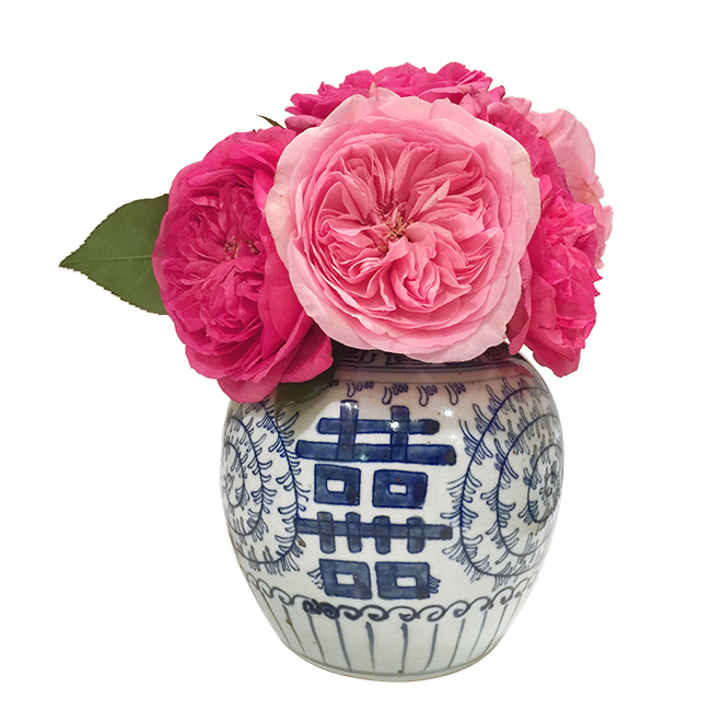 pink-garden-rose-melon-jar-blue-and-white.jpg