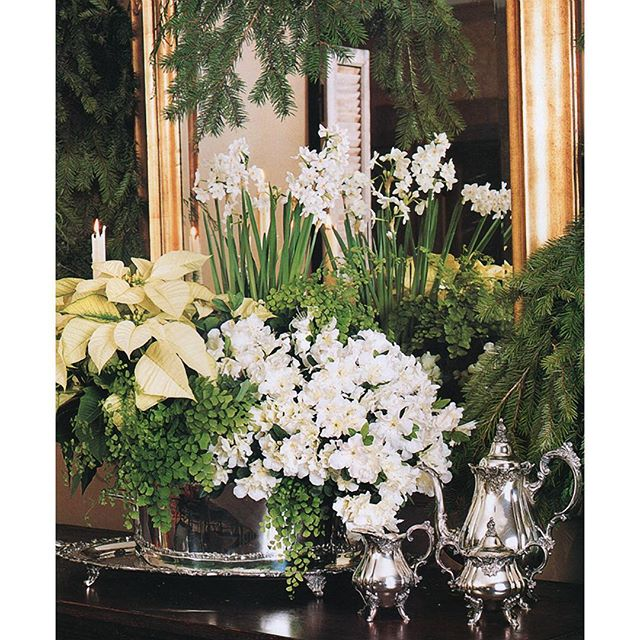 An image from one of my all time favorite publications, Southern Accents, that I posted on my site five years ago showing a beautiful mix of florals and greenery.  This look doesn't age a bit — just keeps getting better! . . . . . #paperwhites #poinsettia #fern #maidenhairfern #narcissus #christmas #christmasdecor #christmasdecorations #christmasdecorating #classicdesign