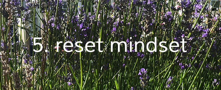 5. reset minds