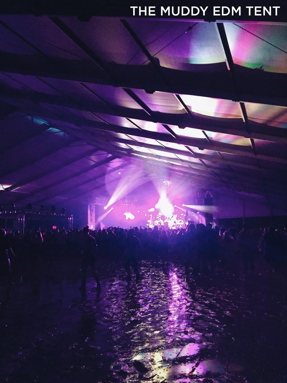 mybelonging-firefly-music-festival-2015-15.JPG