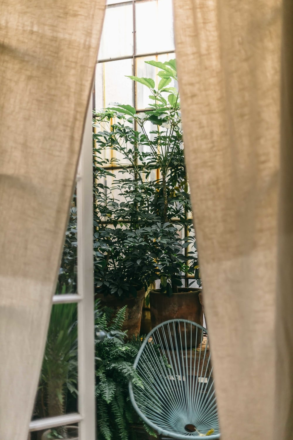 mybelonging-la-canvas-mexico-city-guide-juarez-airbnb-18.jpg