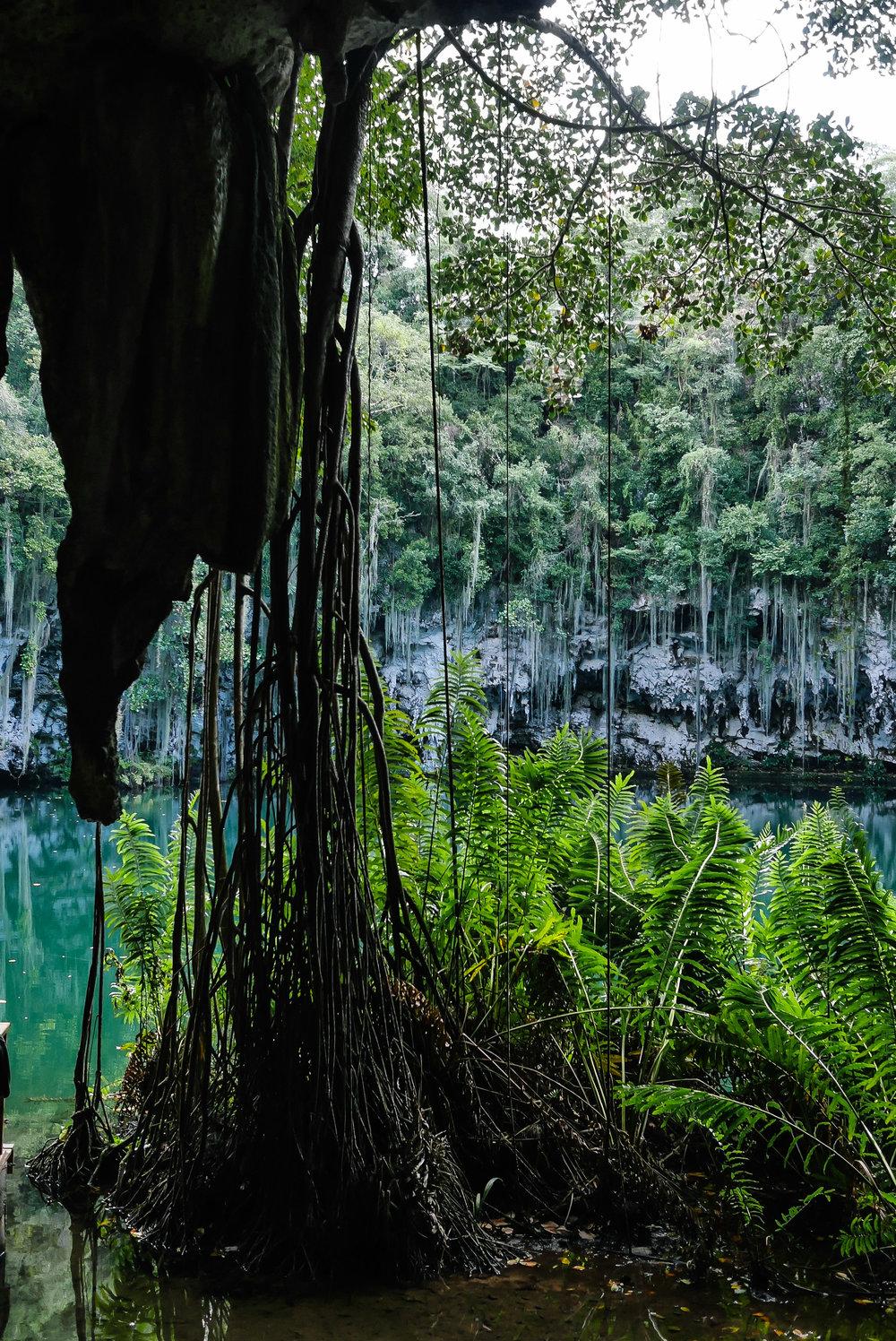 MYBELONGING-TOMMYLEI-DOMINICAN-REPUBLIC-LOS-TRES-OJOS-THREE-EYES-NATIONAL-PARK-UNESCO-SANTO-DOMINGO-TRAVEL-PHOTOGRAPHY-22.jpg