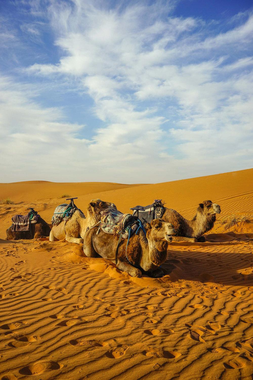 MYBELONGING-SAHARA-DESERT-MOROCCO-MERZOUGA-TRAVEL-PHOTOGRAPHY-SUPERCHARGE-TOMMYLEI-21.jpg