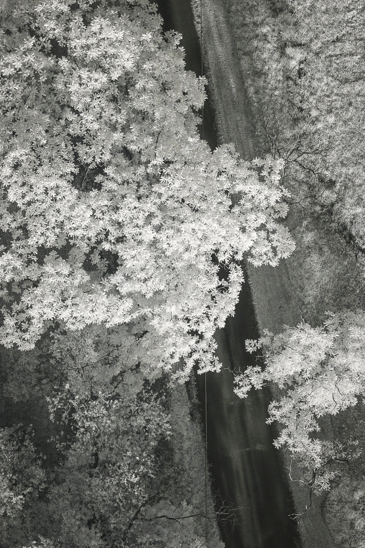 KendallInfraredAerial-17.jpg
