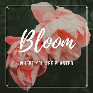 Beautiful you! #bloom #grow #inspiration #wellness #life