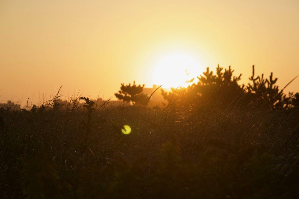 Southampton Sunsets