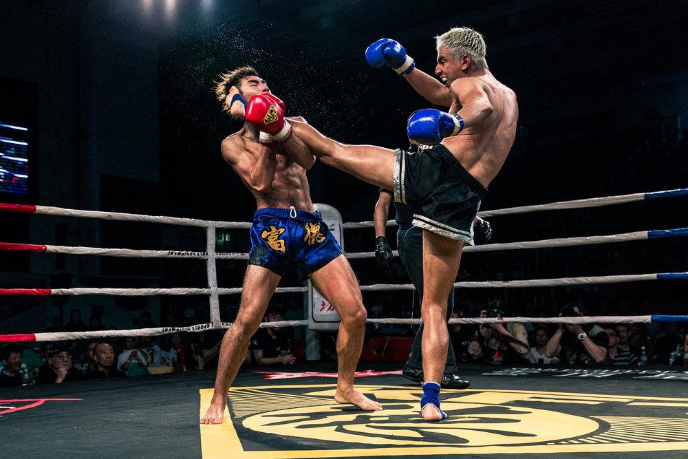 Boxing lores-2.jpg