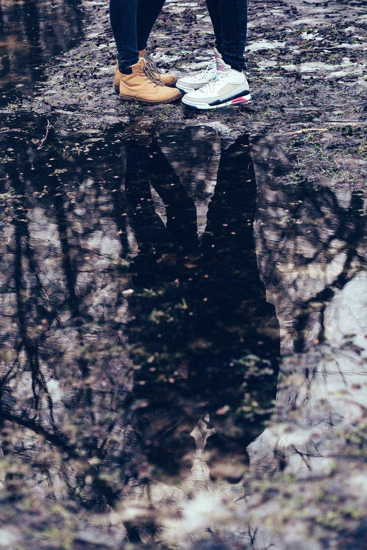 nature-2941085_1920.jpg