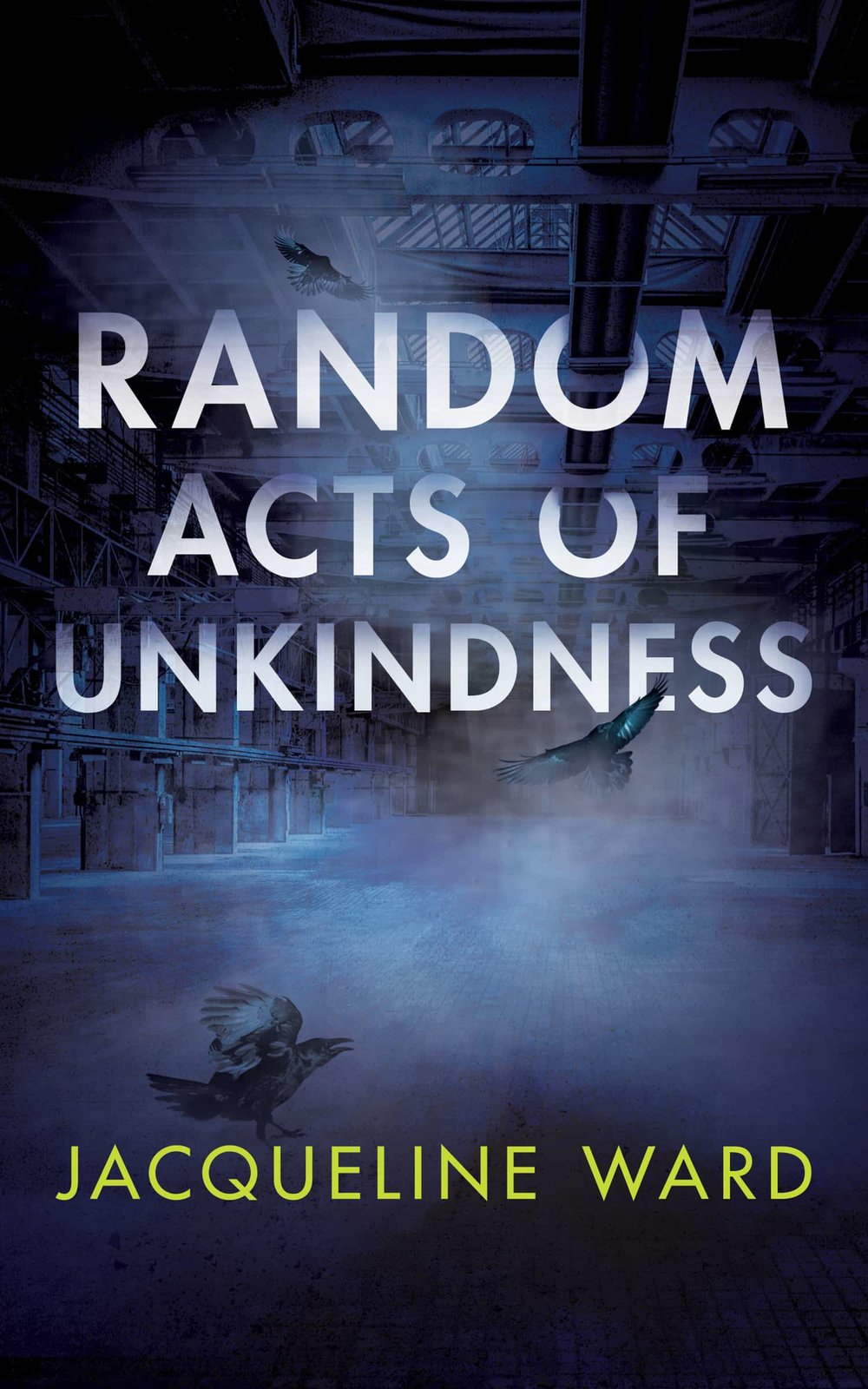Random Acts of Unkindness - DS Jan Pearce has a big problem. Her fifteen year old son, Aiden, is missing. Jan draws together the threads of missing person cases spanning fifty years and finds tragic connections and unsolved questions.Bessy Swain, an elderly woman that Jan finds dead on her search for Aiden, and whose own son, Thomas, was also missing, may have the answers.Jan uses Bessy's information and her own skills and instinct to track down the missing boys. But is it too late for Aiden?Set in the North West of England, with the notorious Saddleworth Moor as a backdrop, Random Acts of Unkindness is a story about motherhood, love and loss and how families of missing people suffer the consequences of major crimes involving their loved ones