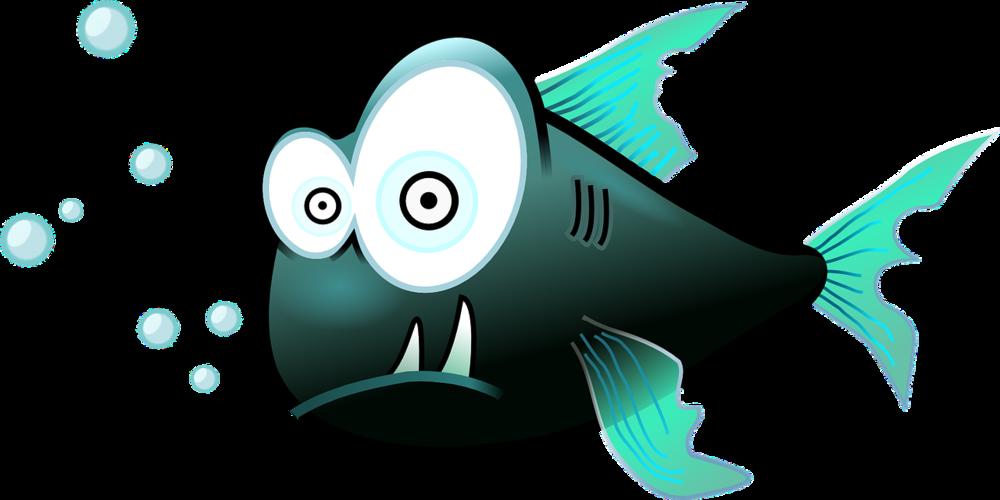 crazy fish eyes