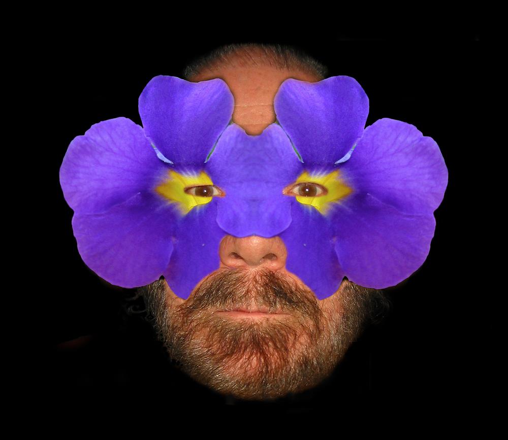 Purplemaskprint.1500.jpg