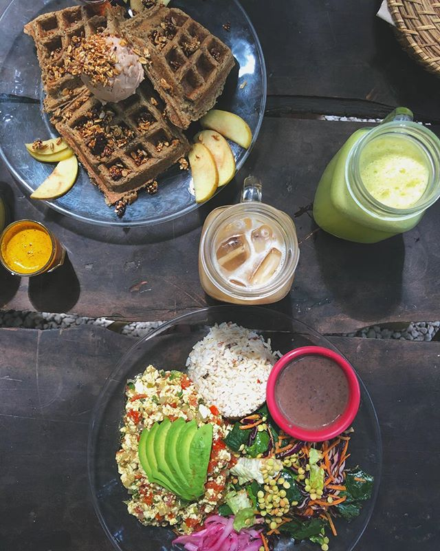 BEST FOOD IN TULUM @co.conamor . . .  #vegan #tulum #tofu #waffles #govegan #beachfood #veganrevolution #fitfam #healthy #fitness #simpleyvivo #veganguy #vegangay #fitfood #healthyfood #thefeedfeed #blogger #style #minimal #bed #veganlife #follow #mexico