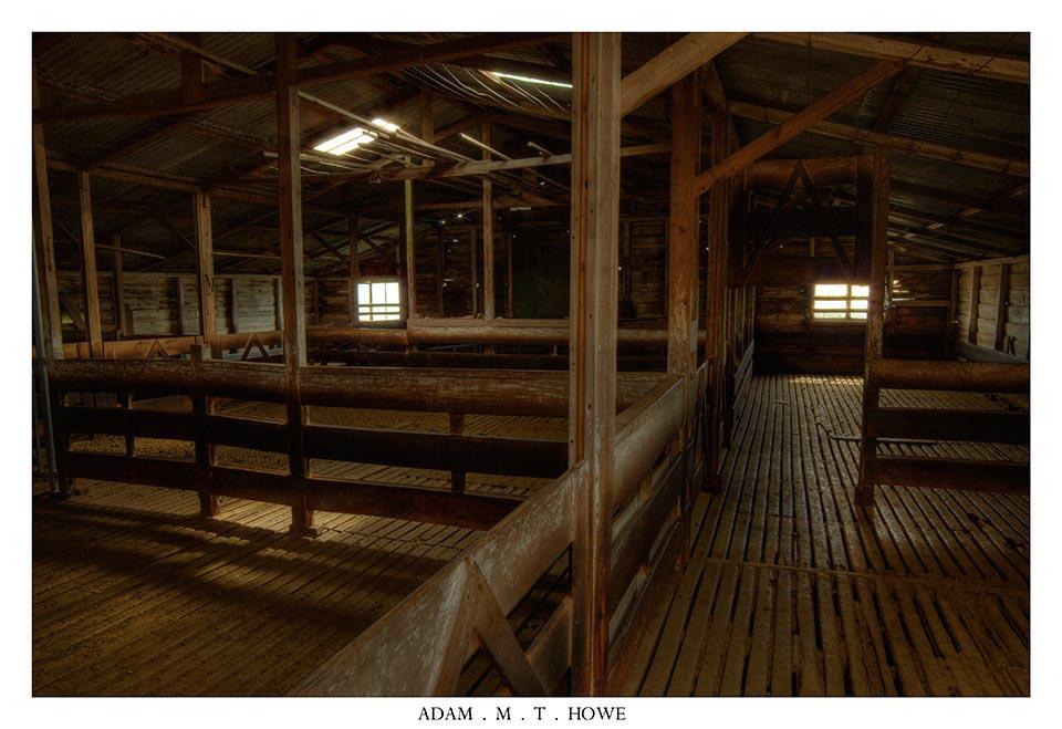 abandoned-shearing-shed-falkland-islands-adam-howe-photography-173.jpg