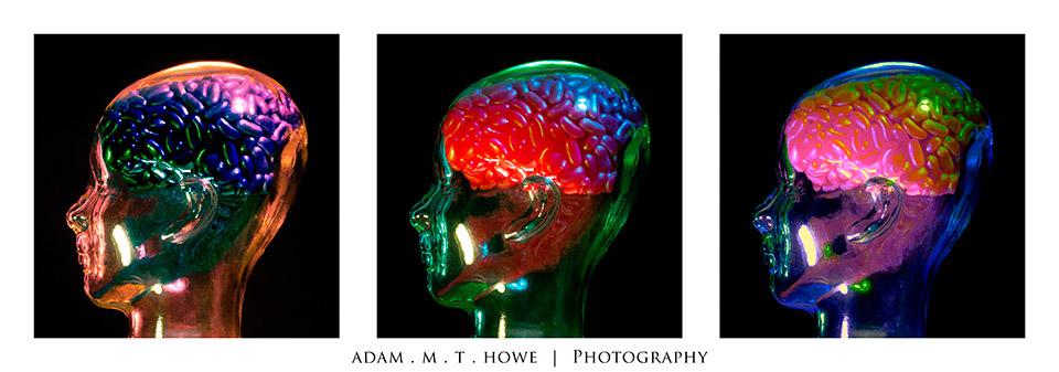 jelly-brains-triptych-adam-howe-photography-39.jpg