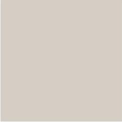 Wall Paint - Popular Gray