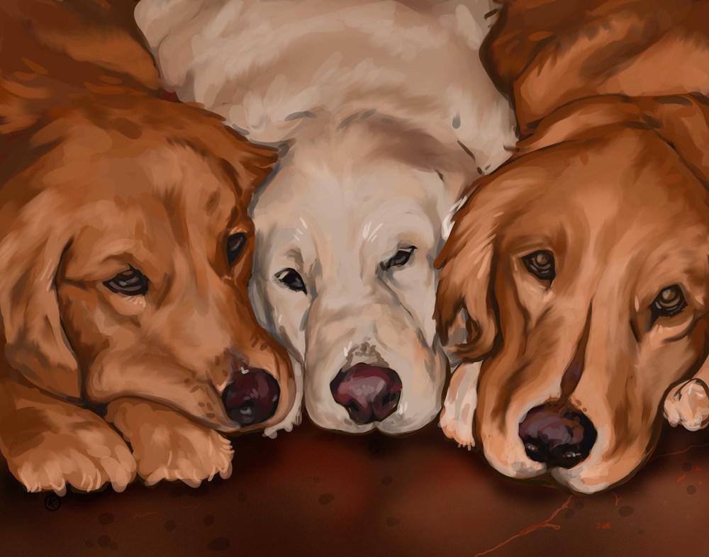 Dogs2lq.jpg