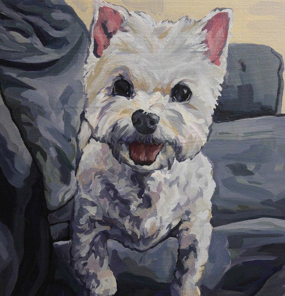 Kodi, Acrylic on Canvas, 10x10