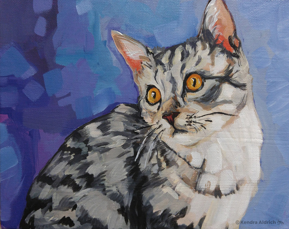 Grey Cat, Acrylic on Canvas, 8x10