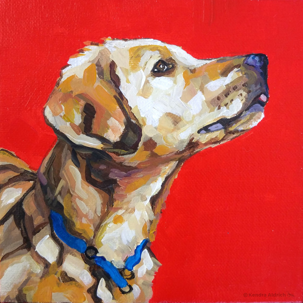 Denali Pup, Acrylic on Canvas, 6x6