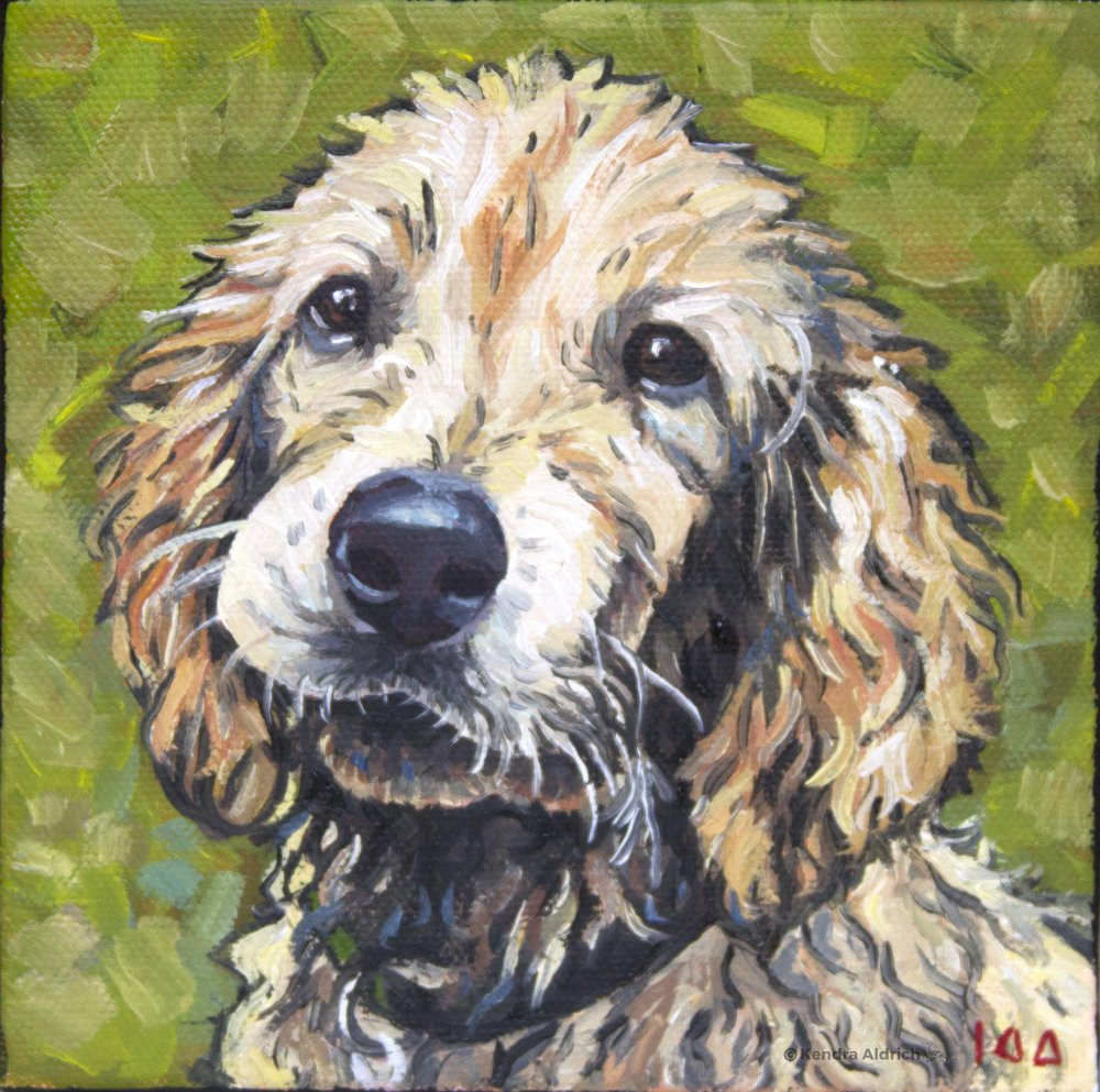Kenny, Oil on Canvas, 6x6