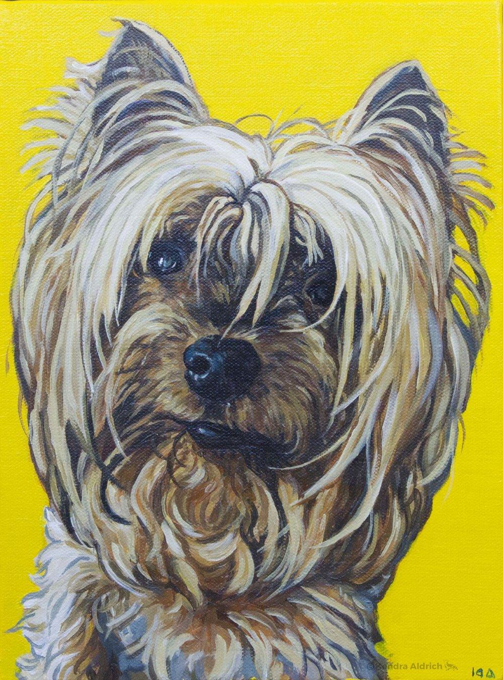 Miah, Acrylic on Canvas, 9x12