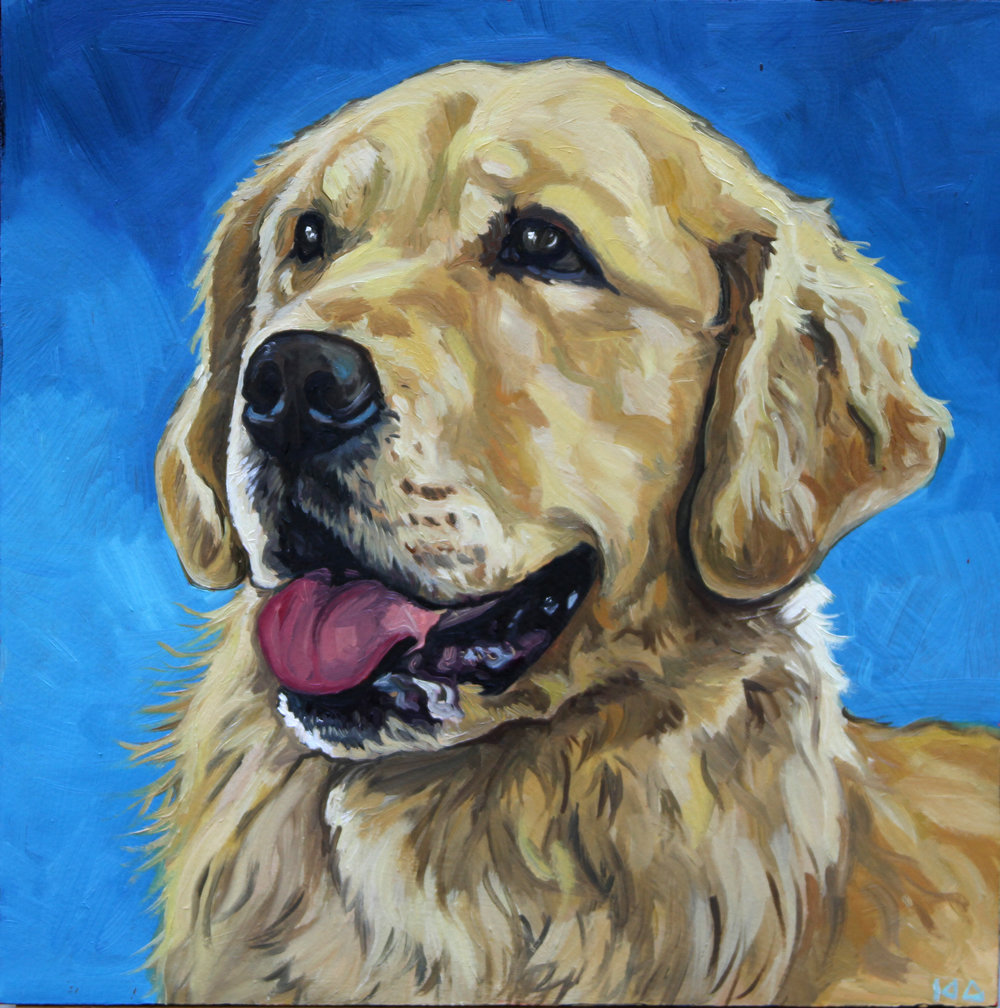 Golden, Oil on Panel, 12x12