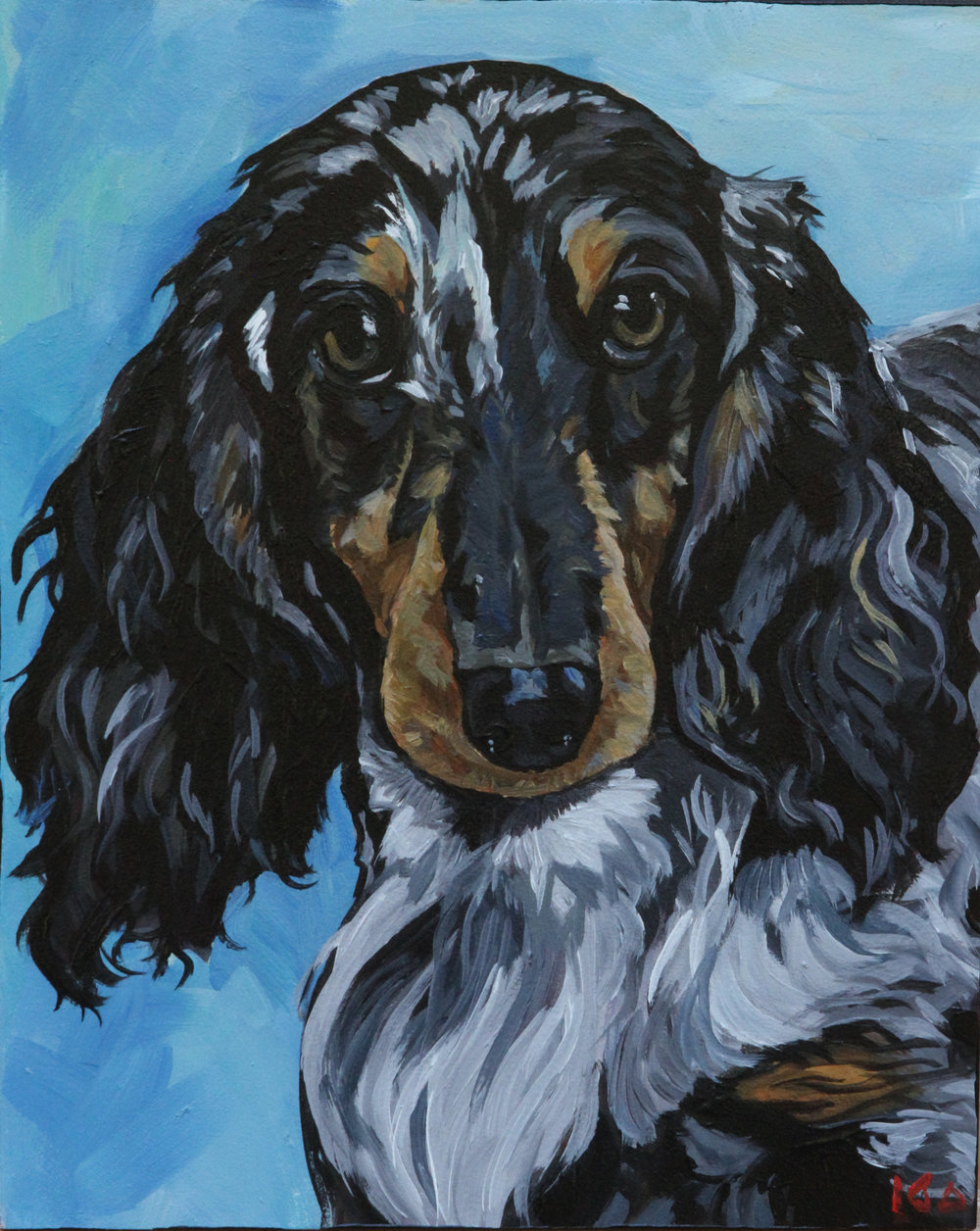 Dachshund, Acrylic on Panel, 8x10