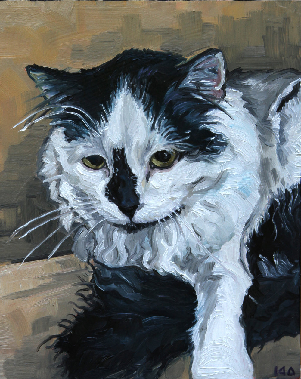 Longhair Cat, Oil on Panel, 8x10