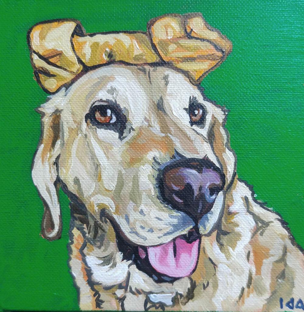 Sammie, Acrylic on Canvas, 6x6
