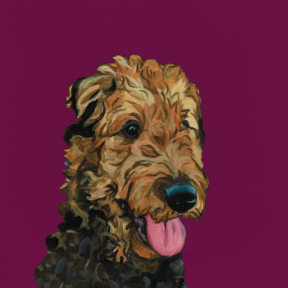 AIREDALE TERRIER -